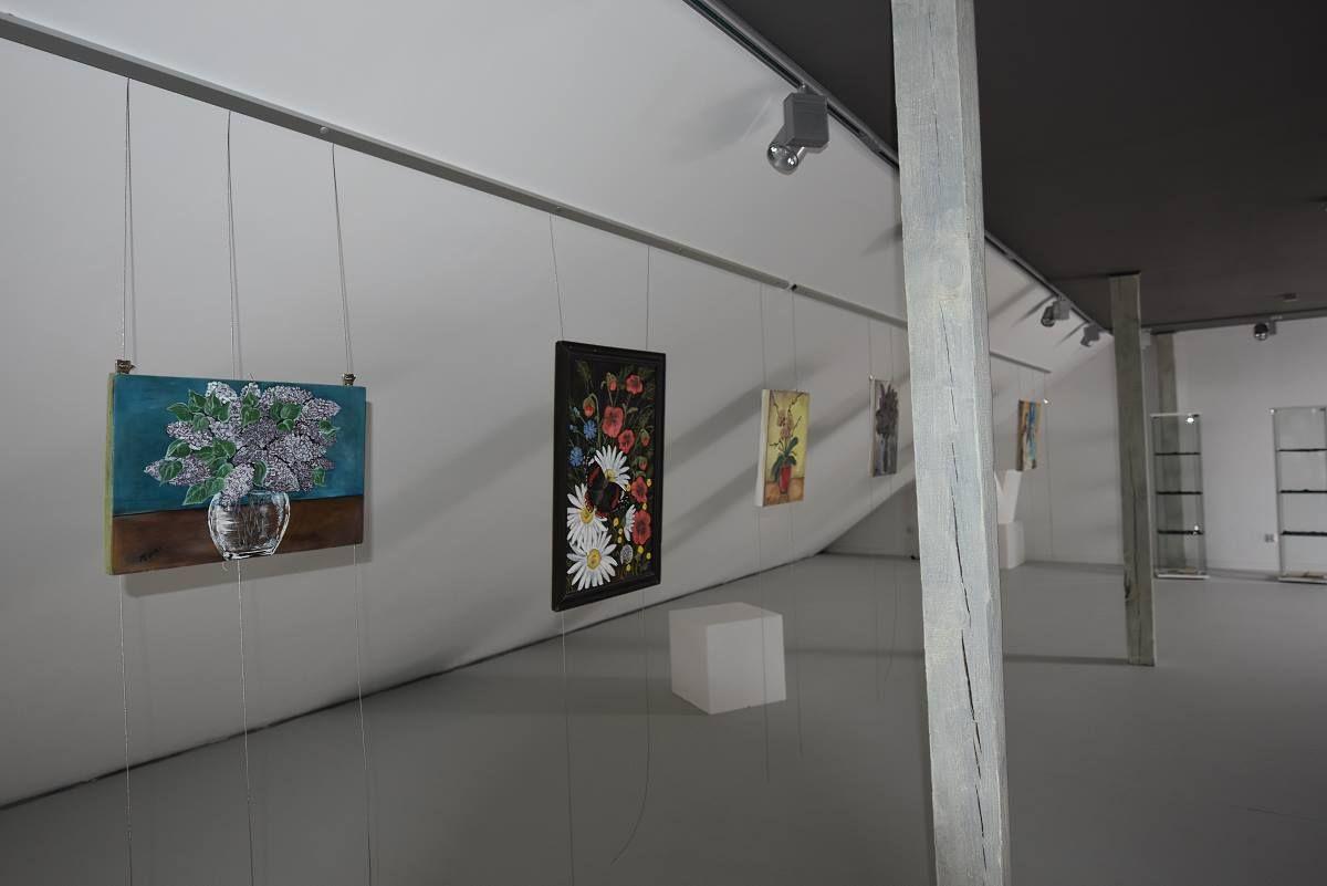 DSC9541-galeria-1200-1200Q72